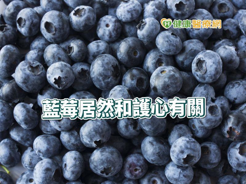 每天150克藍莓 研究:保護心臟健康